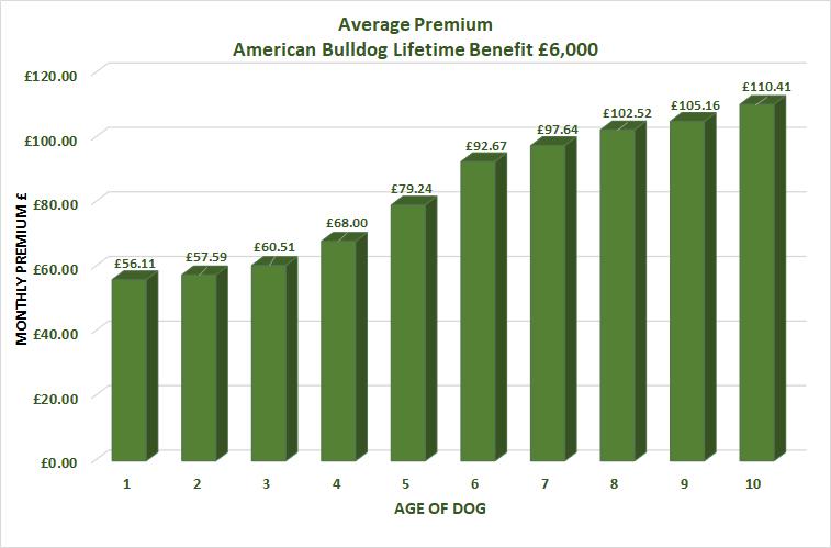 Average cost of American Bulldog Insurance
