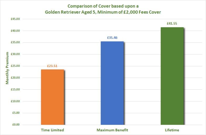 Insurance comparison Golden Retriever