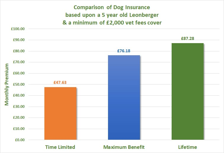 Leonberger Dog Insurance Comparison of covers
